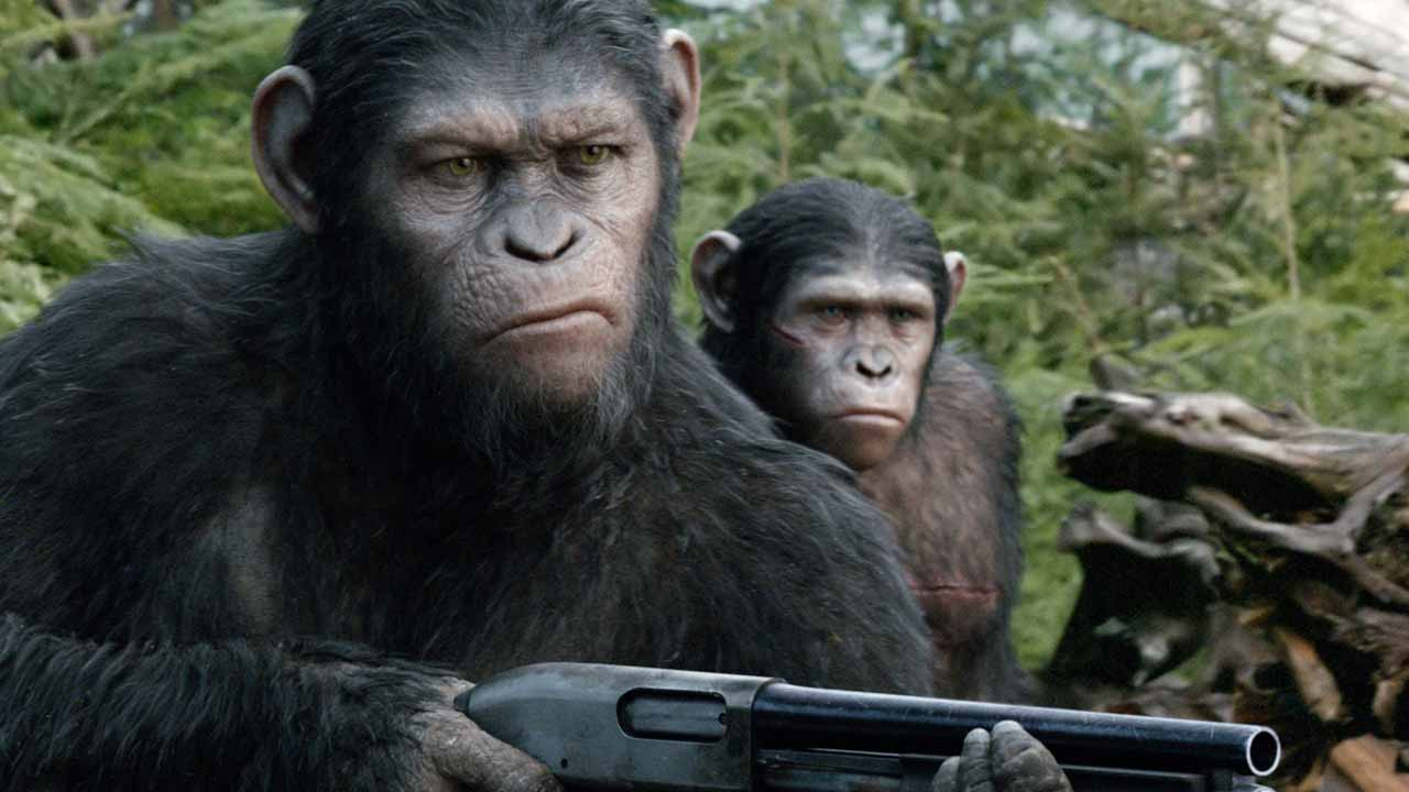 Movie Review Dawn Of The Planet Of The Apes 2014 Naharnet